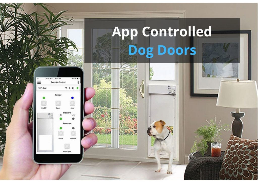 App Controlled Dog Doors